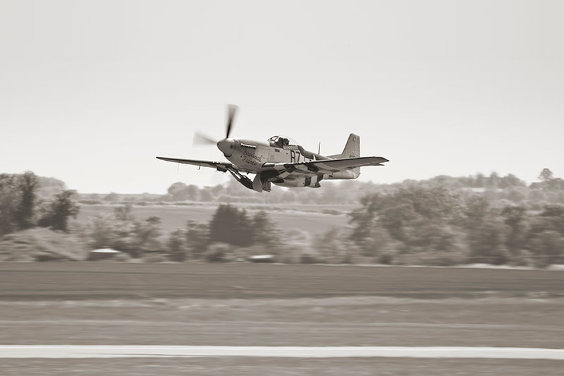 North American Mustang. Image available from Simon Westwood of Fly-by-Light Photography.