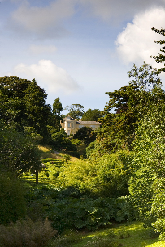Glendurgan Gardens, Cornwall. Image available from Simon Westwood of Fly-by-Light Photography.