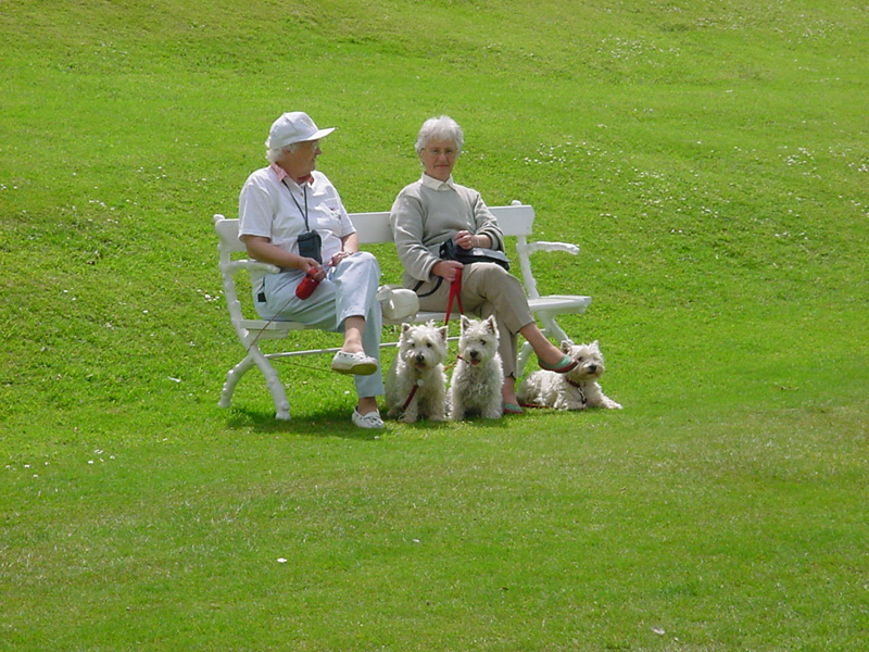 Two Ladies, three Westies. Image available from Simon Westwood of Fly-by-Light Photography.